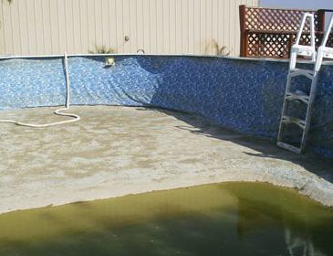 above ground pool is a swamp
