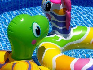 pool toys in pool